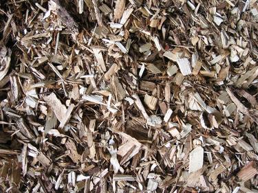 A wide variety of biomass fuels